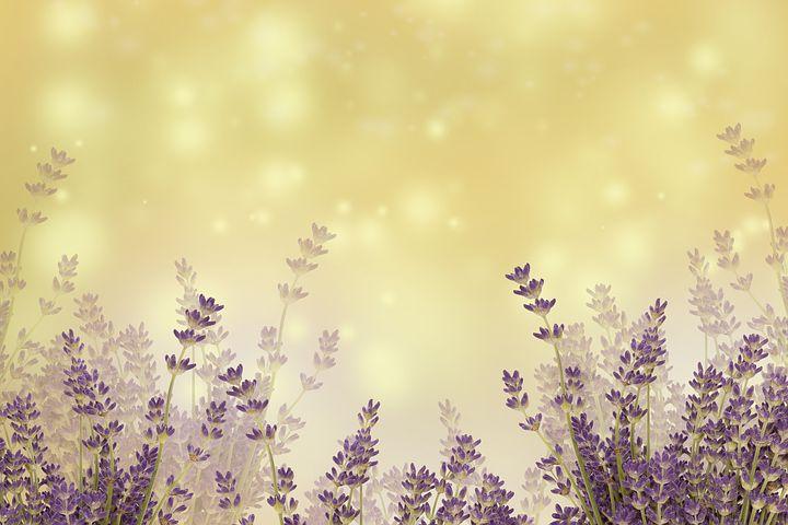 Dofter som gör dig lycklig och ökar ditt välbehag